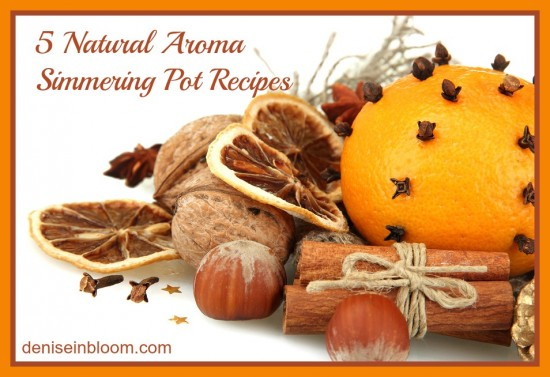 5-natural-aroma-simmering-pot-recipes.jpg
