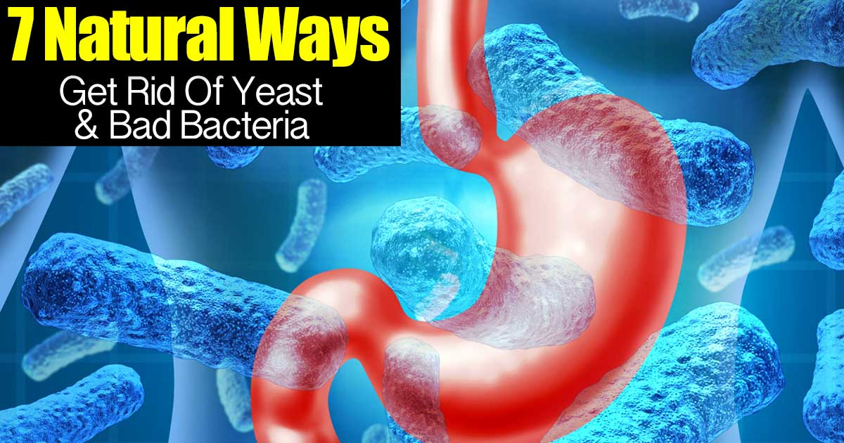 Natural Ways To Rid Yeast Infection