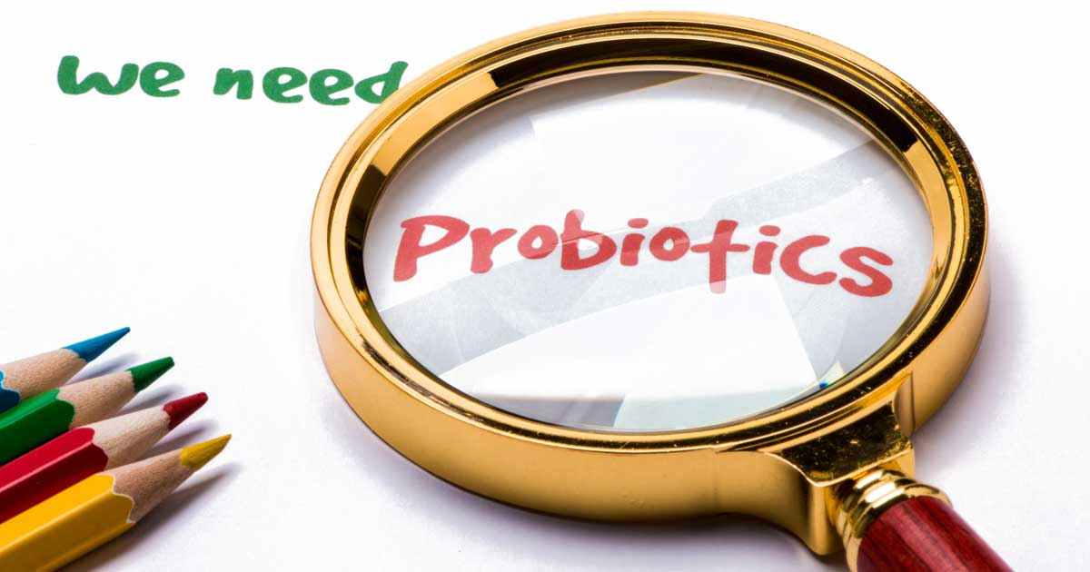 How You Can Increase Probiotics In Your Diet - ohsimply.com