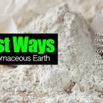 15 Best Ways To Use All Natural Diatomaceous Earth