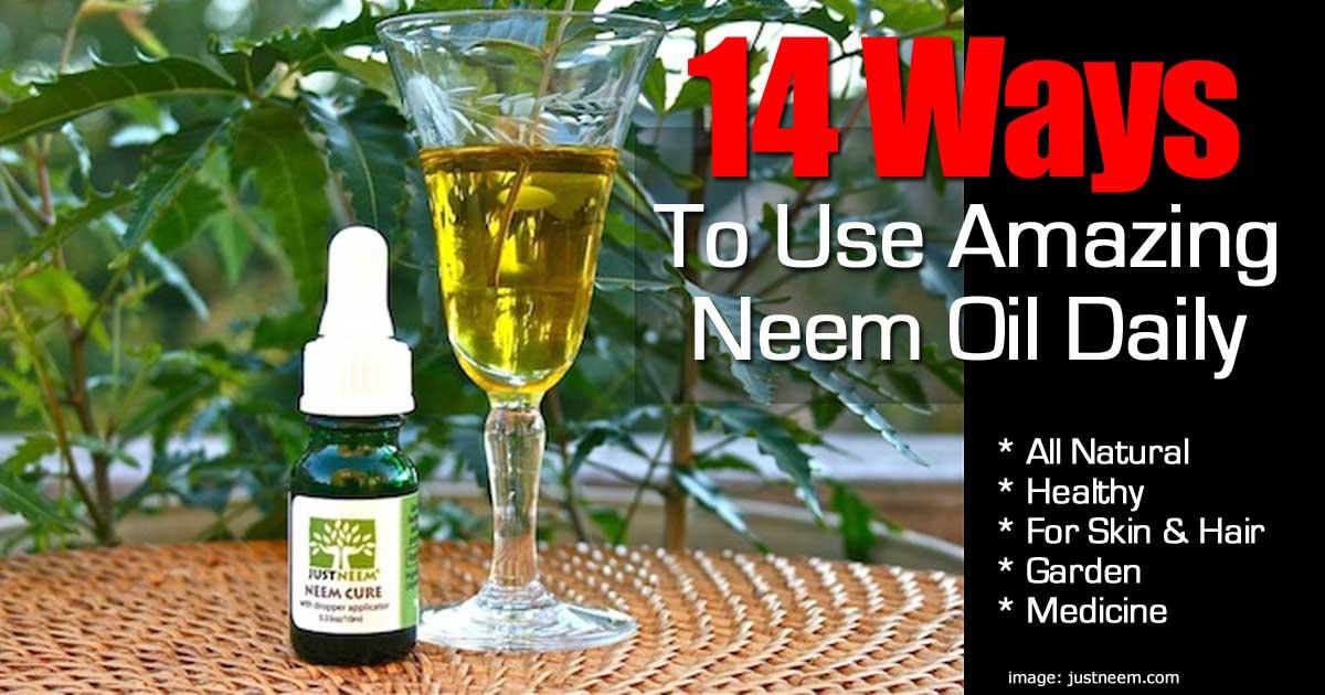 neem oil uses 17 ways to enjoy it 39 s amazing benefits. Black Bedroom Furniture Sets. Home Design Ideas