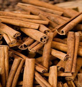 cinnamon (2)