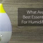 What Are The Best Essential Oils For Humidifier Use?