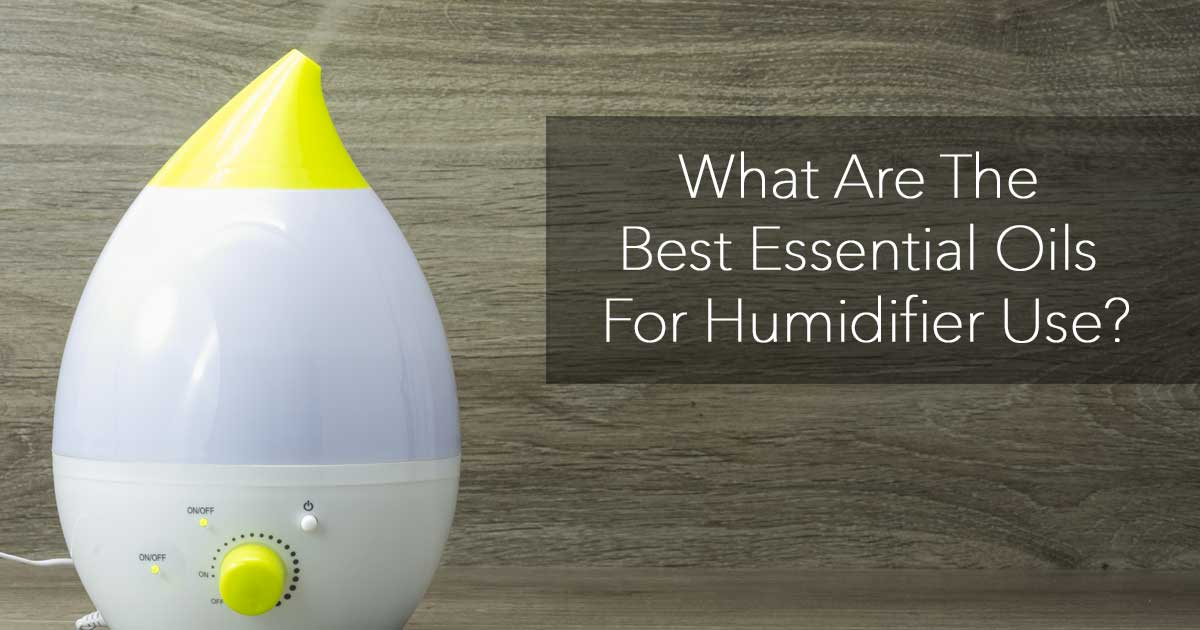 What Are The Best Essential Oils For Humidifier Use