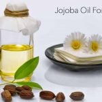 Uses and Benefits of Jojoba Oil for Happy, Healthy Hair