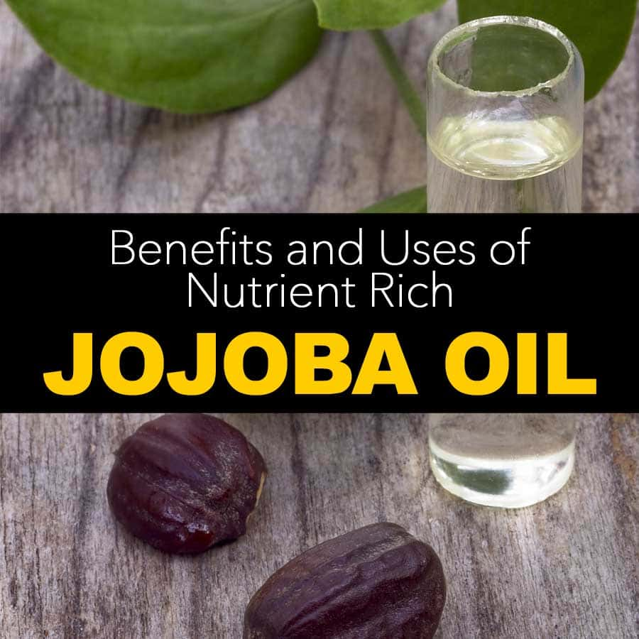 The Wonderful Benefits And Uses Of Nutrient Rich Jojoba Oil