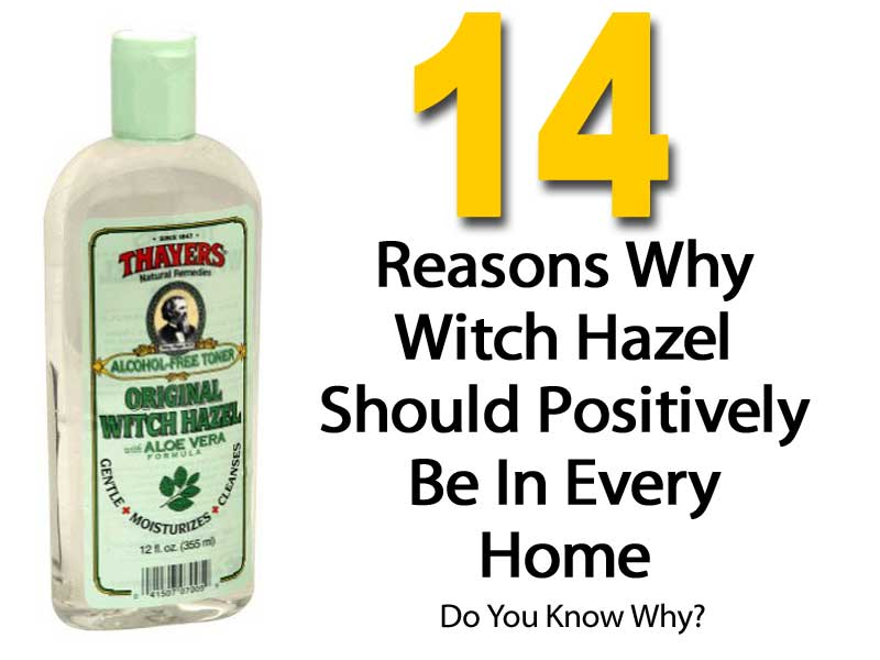 14 witch hazel uses at home