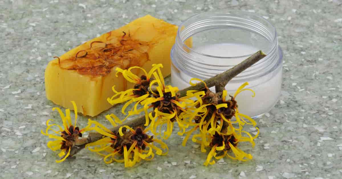 witch hazel astringent how to make one